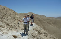 """תיירים מחו""""ל מטיילים במדבר ברמת עבדת לפי תפירה אישית"""